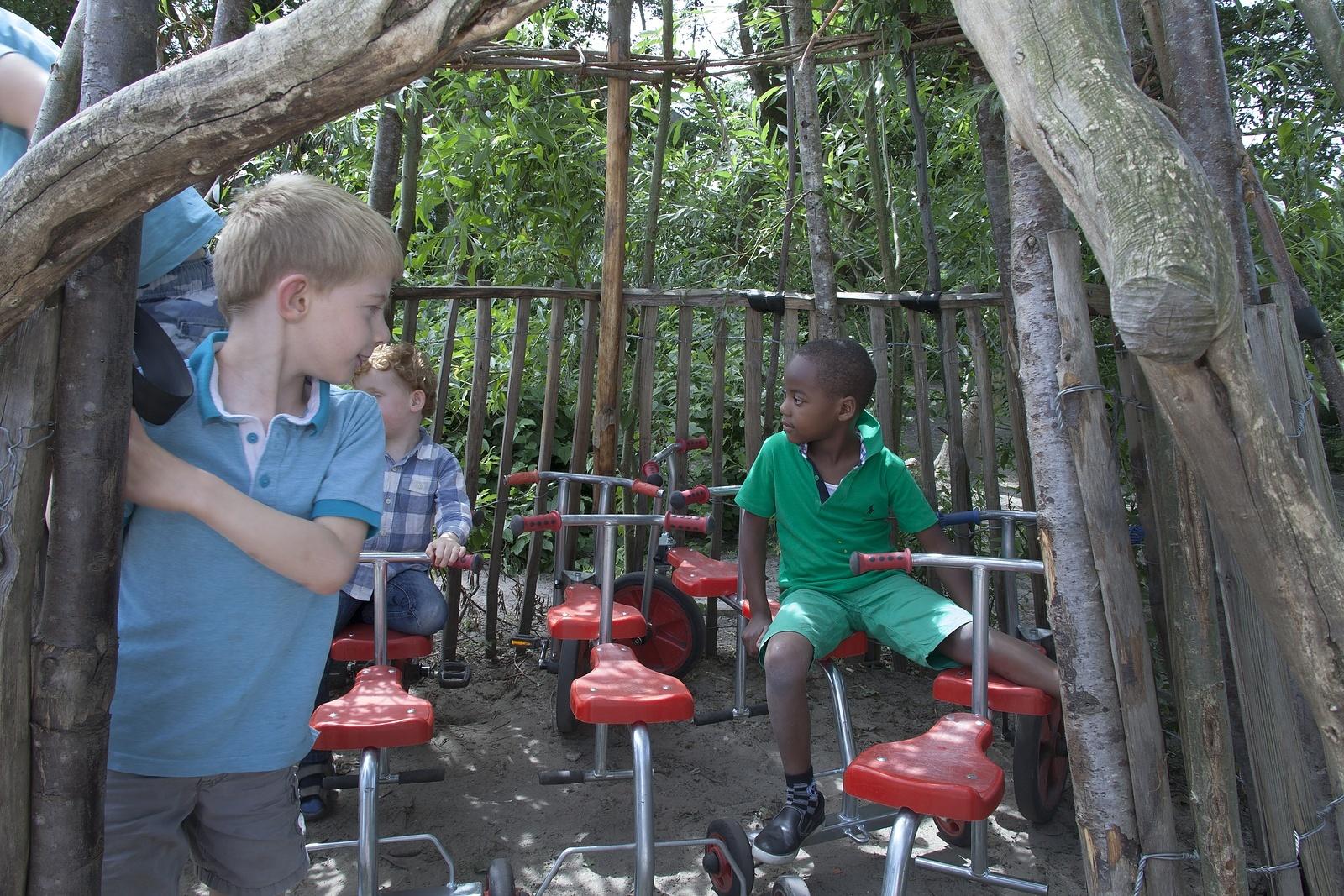 Voorkeur Activiteiten en rituelen op de BSO - KinderRijk @SA65